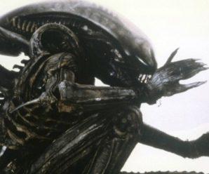 alien-in-den-schatten-die-komplette-staffel